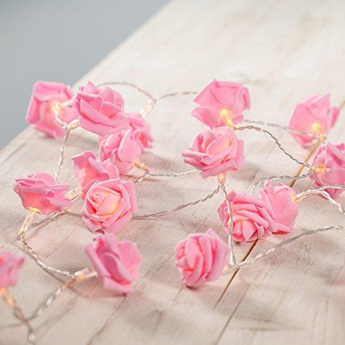 HANGQI 30-LED rose fée fleur de fée lumières s'allume à piles Noël décor de mariage de Noël (blanc chaud)