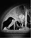 Alfred Hitchcock (The Birds) - Poster cm. 30 x 40