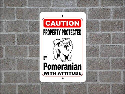Teisyouhu Funny Pet Schild Geschenk Eigentum geschützt von polnischen Jagd Guard Dog Achtung Rasse Metall Aluminium Schild, Dekoration Achtung Schild, Aluminium, Color 6, 12x18 inch