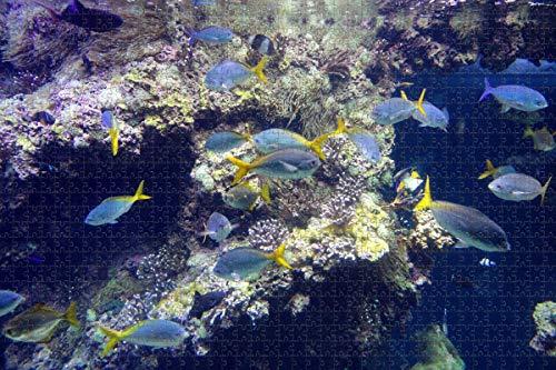 Monaco Museum Aquarium Monte Carlo Puzzle für Erwachsene 1000 Stück Holzpuzzle für Erwachsene