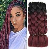 Xtrend 5Pcs 2 Tone Ombre Kanekalon Braiding Hair Crochet Braids Hair 24 Inch Synthetic Jumbo Box Braids Hair Extension for Women 100g/pc (5 Pieces, Black/BUG#)