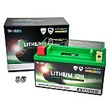 Skyrich HJTX14H-FP Batterie