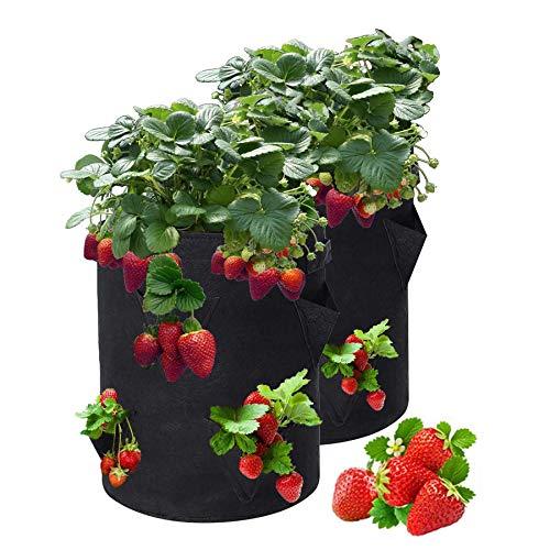 Sumree - Bolsa para plantas, con asas y 8 bolsillos laterales para el crecimiento, transpirable, 2 paquetes de 10 galones, Saco para plantas de fresa.