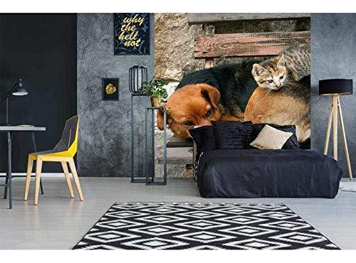 Vlies Fotobehang KAT EN HOND | Niet-Geweven Foto Mural | Wall Mural - Behang - Reusachtige Wandposter | Premium Kwaliteit - Gemaakt in de EU | 225 cm x 250 cm