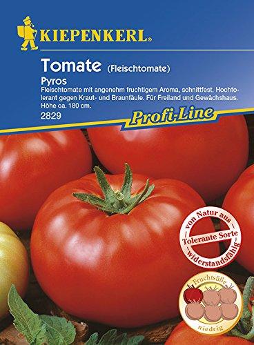 Kiepenkerl Fleisch-Tomate 'Pyros', F1 | Freiland und Gewächshaus | süßer Geschmack | 1 Packung Samen