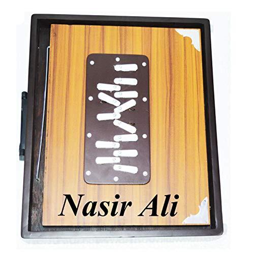 INDISCHE INSTRUMENTE, Shruti Box, groß (14 x 11 x 2,5) Zoll, Surpeti Surpeti, mit Tasche, braune Farbe, Musikinstrument indisch