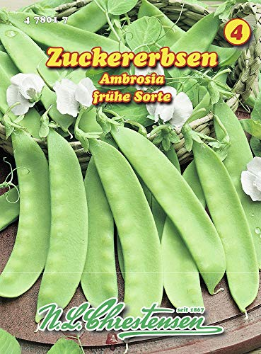 N.L. Chrestensen 478017 Zuckererbse Ambrosia (Zuckererbsensamen)