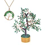 Ever Vibes Green Jade Chakra Healing Tree Home Décor [Bonus Necklace] for Fortune, Wealth & Good Luck   Handmade Money Tree of Life Feng Shui Bonsai with Natural Reiki Gemstones