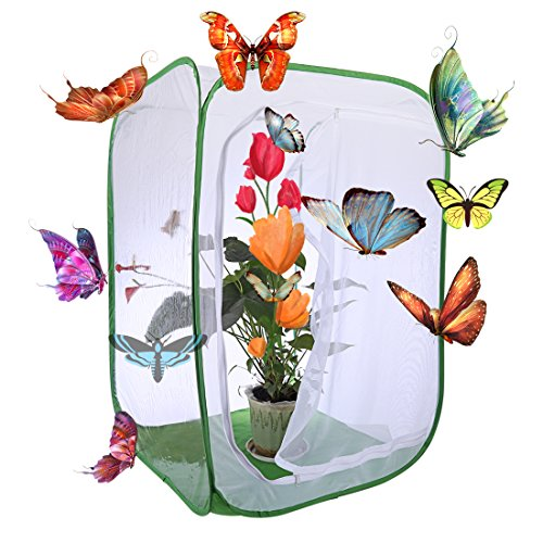 Macium Schmetterlings Habitat Käfig, Faltbares Schmetterlings- und Insektennetz Schmetterlings-Lebensraum-Käfig - 60 x 60 x 90cm (Weiß + Grün)