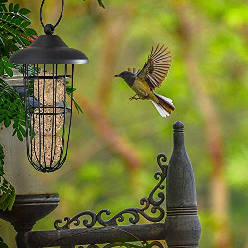 Makluce Hangend voederstation, waterdichte vogelvoerdispenser, vogel voeder, vogel, voederhuis voor wilde vogels vogelhuisje, vogelvoerstation, voederhuis, vogelhuisje tuingereedschap exppedient