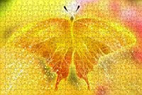 LHJOY 大人のためのジグソーパズル500ピース蝶、昆虫、動物誕生日プレゼントと子供のためのホリデーギフト 52x38cm