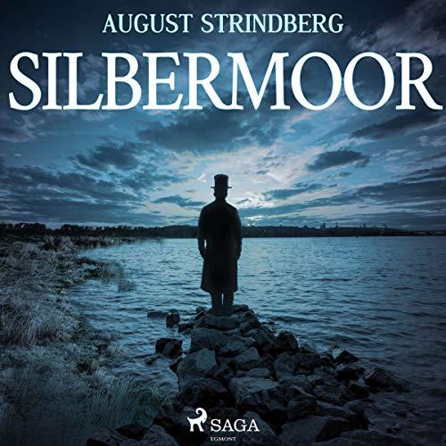 Das Silbermoor audiobook cover art