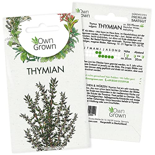 Thymian Samen: Premium Kräuter Samen...