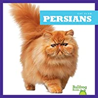 Persians (Cat Club)