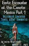 Erotic Encounter at the Cenote: Mexico Part 1: Billionaire Concierge Travel Agent Dominates (Erotic Encounter at... Book 2) (English Edition)