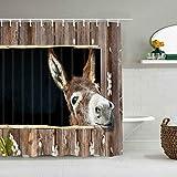 Duschvorhang Esel Tierliebhaber Netter lustiger Esel wasserdichte Badeinlagen Haken enthalten - Badezimmer dekorative Ideen Polyester Stoff Zubehör