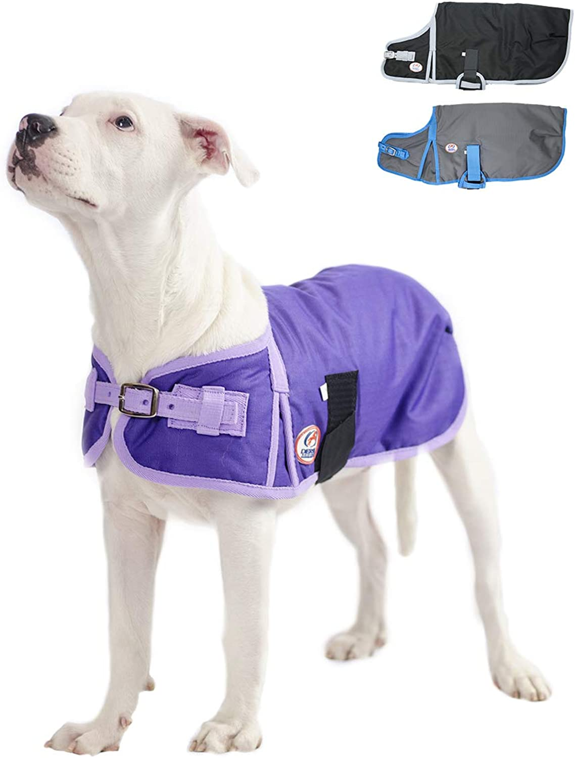 Derby Originals Solid color HorseTough 600D Waterproof Ripstop Nylon Winter Dog Coat 150g Polyfil with One Year Warranty