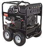 Dayton Portable Generator 12000 Watts Gas