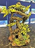Aquarium-Vivariumdekoration Bonsai-Wurzel mit grünen Kunststoffpflanzen
