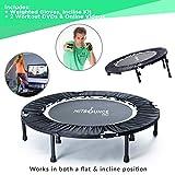 HIIT Bounce Pro, mini trampolino pieghevole con inclinazione regolabile. Include DVD High Energy Compilation e relativo allenamento, guanti e adesione online con oltre 100incredibili esercizi.
