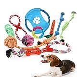 Juguetes de Cuerda para Perros - 10 Piezas
