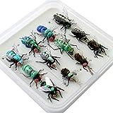 YAZHIDA Kit de moscas de pesca con mosca con caja de mosca/ninfas/mosca seca, mosca húmeda/serpentinas/moscas realistas