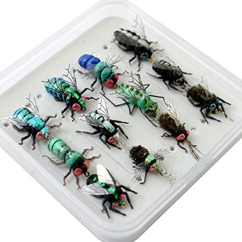 YAZHIDA Fly Fishing Flies kit with Fly Box/Nymphs/Dry Fly,Wet Fly/Streamers/Realistic Flies