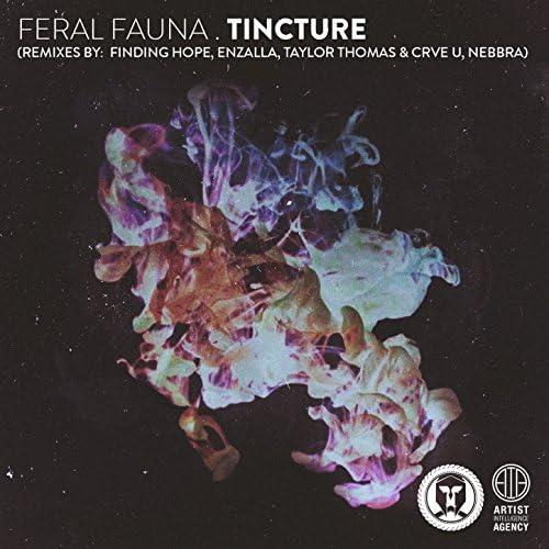 Feral Fauna