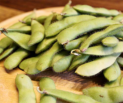 Bobby-Seeds Edamame Samen Green Shell BIO Portion