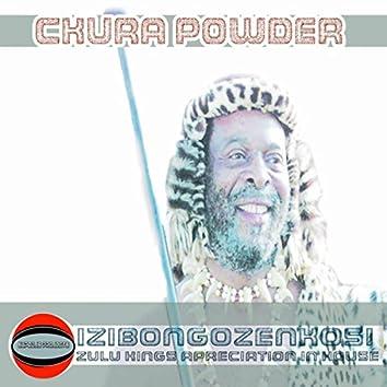The Zulu King (Izibongo Zenkosi)