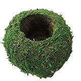 Forart 6 Inch Natural Planter Weave Moss Ball Kokedama Planter Bonsai Plant Flower Pot Garden Decor Flower Holder Pot Garden Plant Potted Hydrating Flowerpot