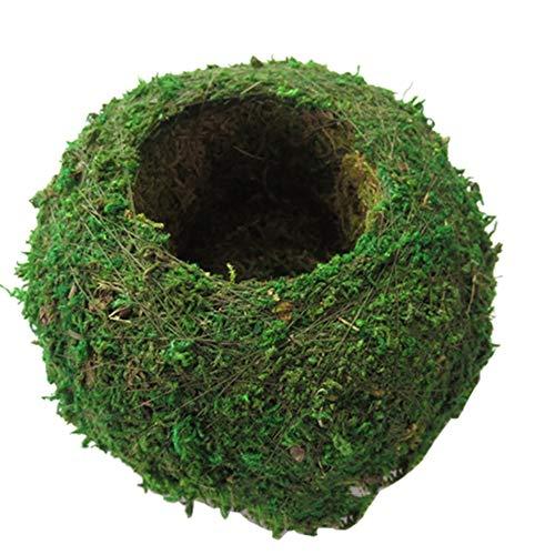 Forart 6 Pulgadas Plantador natural Tejido Bola de musgo Jardinera Kokedama Planta de bonsái Maceta Decoración de jardín Soporte de flores Maceta Planta de jardín Maceta Hidratante en maceta
