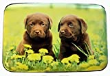 Fig Design Group Labrador Puppies Flowers RFID Secure Theft Protection Credit Card Armored Wallet