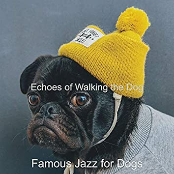 Echoes of Walking the Dog