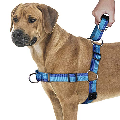 PETBABA No Pull Dog Harness, Front Clip Give Pet No Choking Walk, Martingale Handle Provide Quick Control and Release in Training, Reflective Step-in Vest Safety at Night in Blue