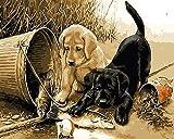 Wbzyj Juegos de Pintura por números Kits de Pintura por números para Adultos Kit de Pintura por números en Lienzo para niños Concurso de Dibujo- Perro Negro Perro Amarillo 16x20 Pulgadas (Sin Marco)