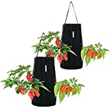 Pri Gardens Hanging Aeration Planter for Hot Peppers, Strawberries and Herbs, Eight Holes Per Planter