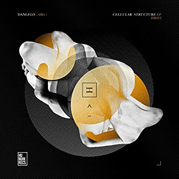 Cellular Structure EP