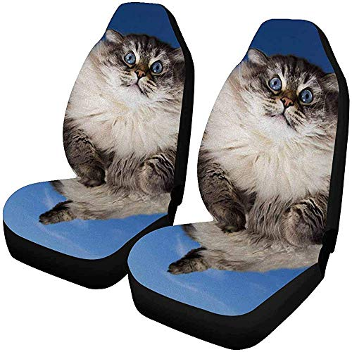 Enoqunt Grappige kat vliegen in de wolken blauwe hemel autostoelhoezen volledige autostoelhoezen voorstoelen passen