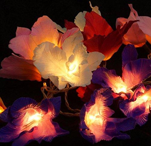 Guru-Shop Lotus Blüten LED Lichterkette 20 Stk. - Blüte Bunt, Papier, Lichterketten