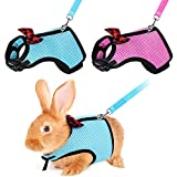 YUEPET 2 Pieces Adjustable Rabbit Harness and Leash No Pull Comfortable Breathable Mesh Vest for Bunny Walking S