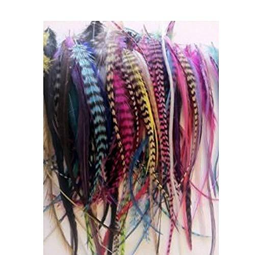 Sexy paillettes femmes de 100 plumes pour extensions de cheveux mélange arc-en-ciel couleurs de véritable Grizzly et massif de gamme 10,2 cm 6 \