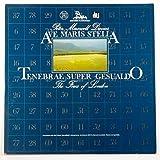 MAXWELL-DAVIES, Peter: Ave Maris Stella; Tenebrae Super Gesualdo