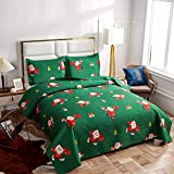 Christmas Bedding Set Full/Queen Size Quilts Blanket with Santa Claus/Snowman/Deer Reversible Lightweight Bedspreads Coverlet for Xmas Gift –(Green, 1 Quilt,2 Pillow Sham)
