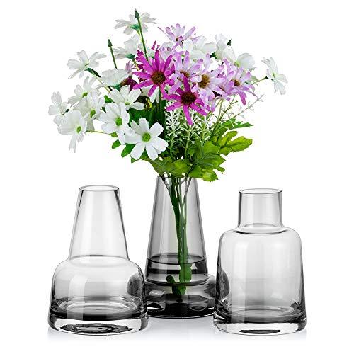 Hochwertige Glasvase für Blumen 3 STK. Graue Knospenvase Dickes Glas Dekorativer Kristall Demijohn Fit für Minimalist für Küchendekor Tischdekoration Wohnzimmer Couchtisch Hochzeit