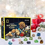 Christmas Advent Calendars 2020, 24 Days Unique Gift for Kids, Rocks Storage Gift Box, Advent Countdown Calendar Gift Box, Xmas Countdown Ornaments Home Party
