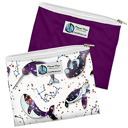 Planet Wise Reusable Zipper Sandwich Bags, 2-Pack, Celestial Sea/Plum Poly