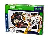 Thames & Kosmos 261050 Juguete Modelo de anatoma de Tigre, Multi