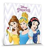 1art1 Disney Prinzessin - Belle, Aschenputtel Und