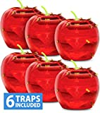 Best Fruit Fly Traps - Raid Fruit Fly Trap Bundle, Set of 3 Review